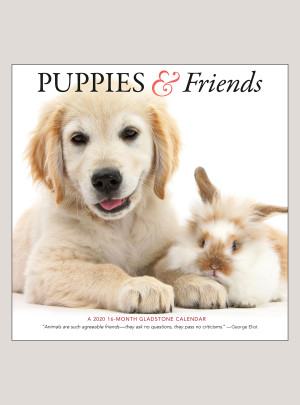 "2020 Puppies & Friends 12"" x 12"" WALL CALENDAR"