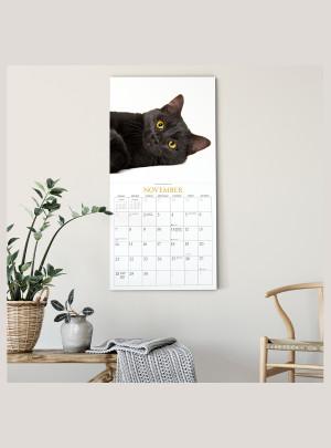 "2021 Black Cats on White 12"" x 12"" WALL CALENDAR"