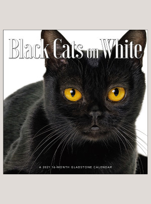 "2021 Black Cats on White 12"" x 12"" WALL CALENDAR"