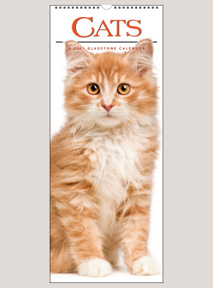 "2021 Cats 9"" x 22"" VERTICAL WALL CALENDAR"