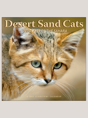 """2021 Desert Sand Cats 12"""" x 12"""" WALL CALENDAR"""