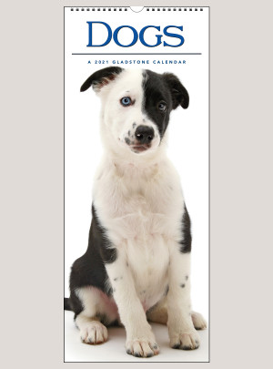 "2021 Dogs 9"" x 22"" VERTICAL WALL CALENDAR"
