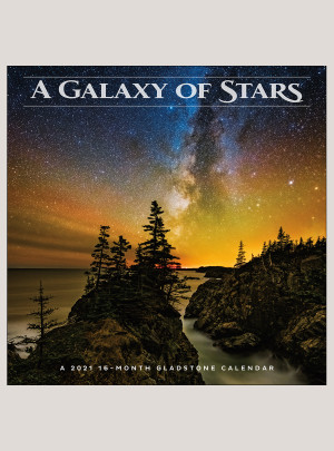 "2021 A Galaxy of Stars 12"" x 12"" WALL CALENDAR"