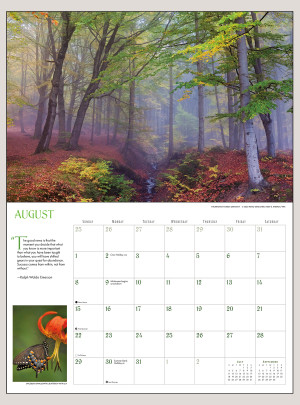 "2021 Into the Woods 18"" x 12"" DELUXE WALL CALENDAR"