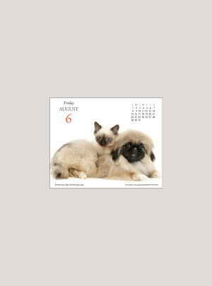 "2021 Kittens & Friends 5.25"" x 4.25"" PAGE PER DAY CALENDAR"
