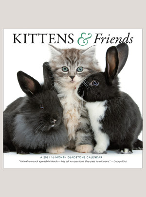 "2021 Kittens & Friends 12"" x 12"" WALL CALENDAR"