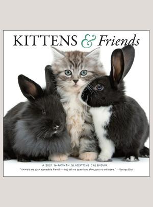 """2021 Kittens & Friends 12"""" x 12"""" WALL CALENDAR"""
