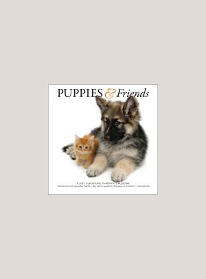 """2021 Puppies & Friends 7"""" x 7"""" MINI WALL CALENDAR"""