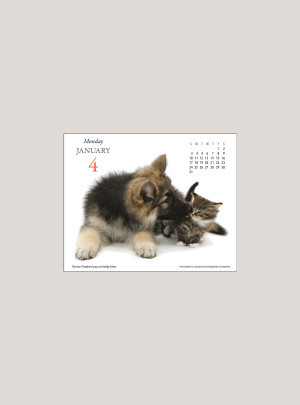 """2021 Puppies & Friends 5.25"""" x 4.25"""" PAGE PER DAY CALENDAR"""