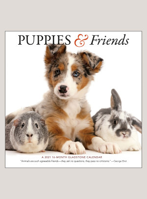 """2021 Puppies & Friends 12"""" x 12"""" WALL CALENDAR"""