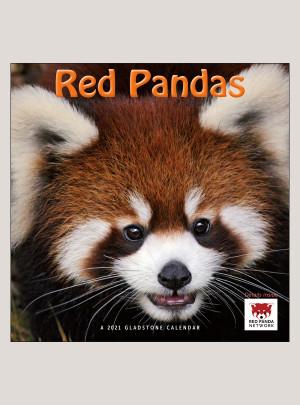 """2021 Red Pandas 12"""" x 12"""" WALL CALENDAR"""