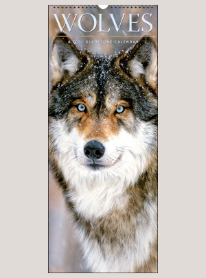"2021 Wolves 9"" x 22"" VERTICAL WALL CALENDAR"
