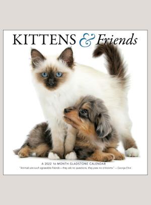 """2022 Kittens & Friends 12"""" x 12"""" WALL CALENDAR"""