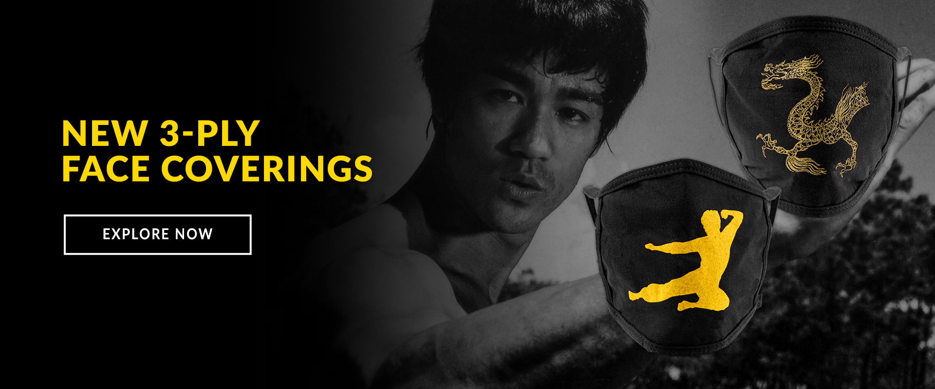 Bruce Lee 3-Ply Face Covers