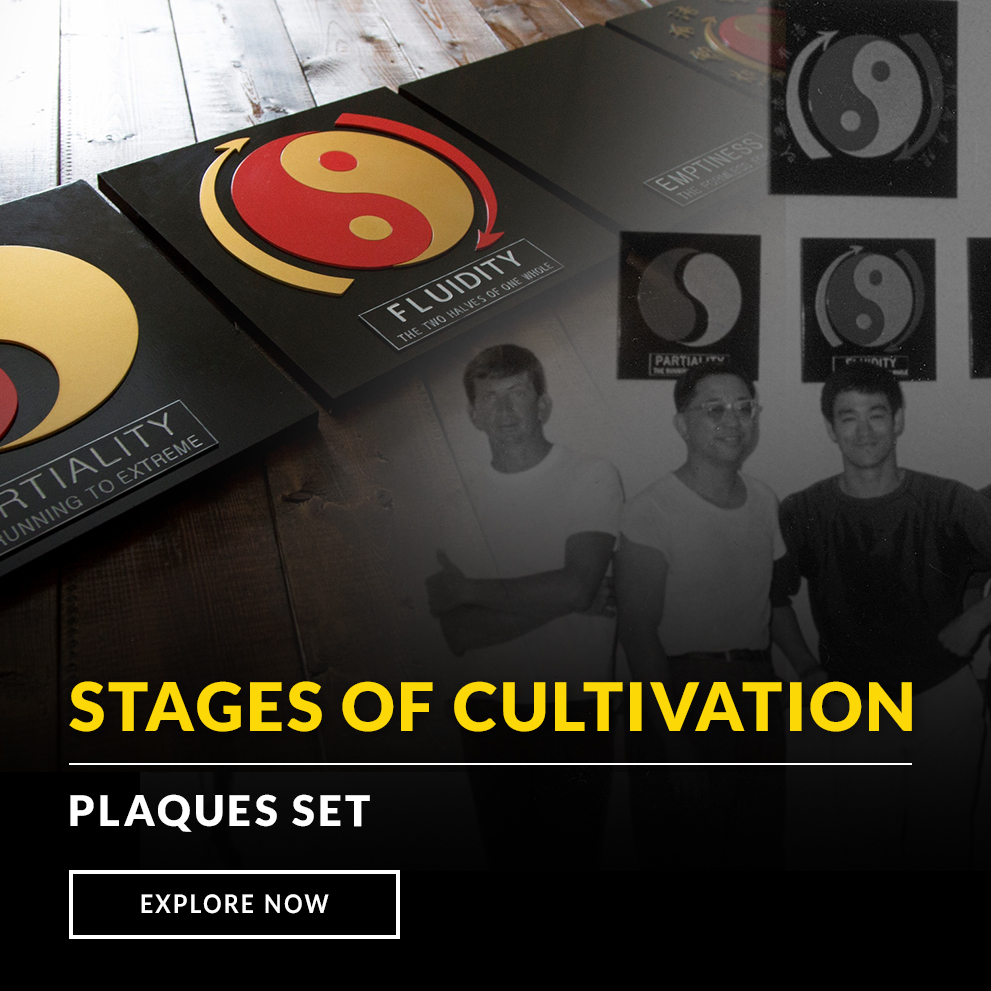 Bruce Lee Stages of Cultivation Plaque Set
