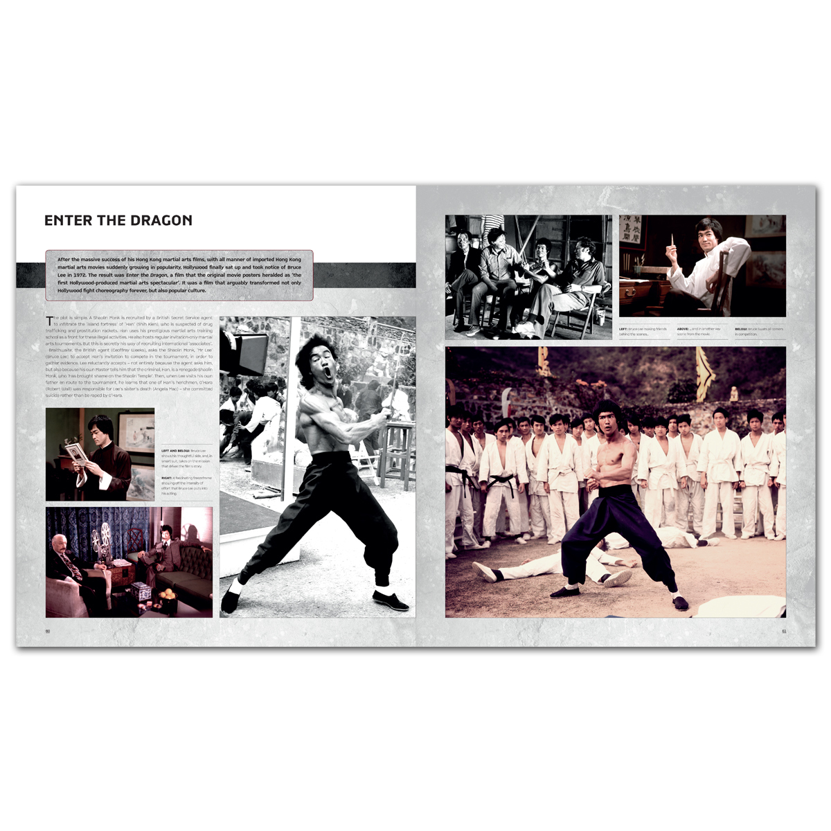 The Treasures of Bruce Lee Book - Standard Edition