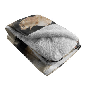 Dragon Story Sherpa Fleece Blanket