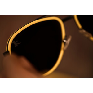 BL 80th Anniversary Sunglasses