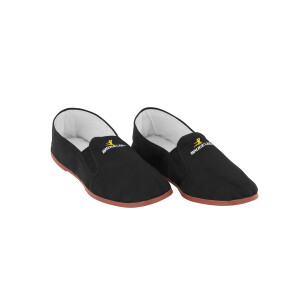 Kung Fu Shoe