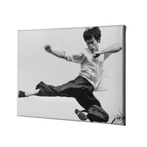 Flying Kick For The Ages Canvas Print
