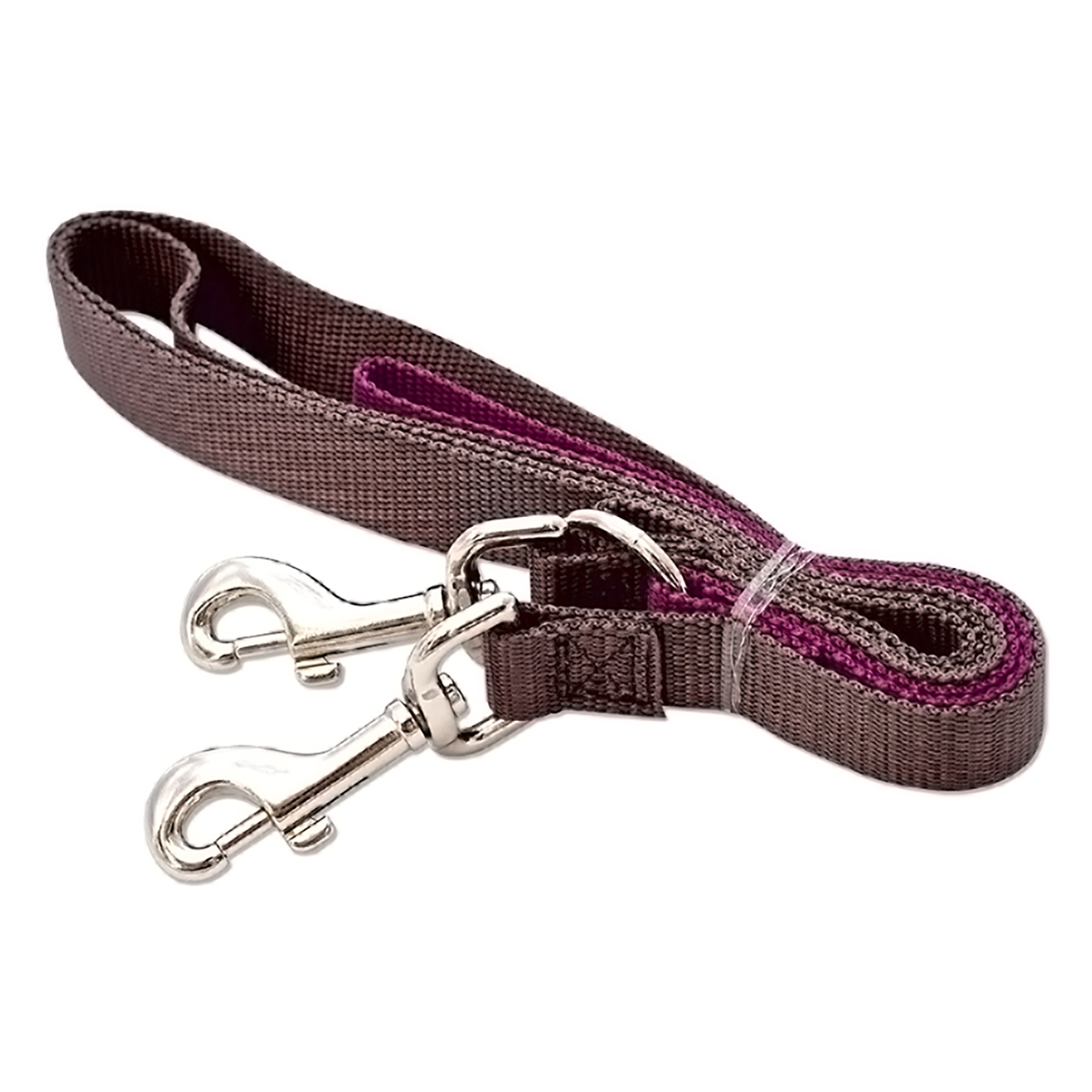 Positively Double-Connection Training Leash