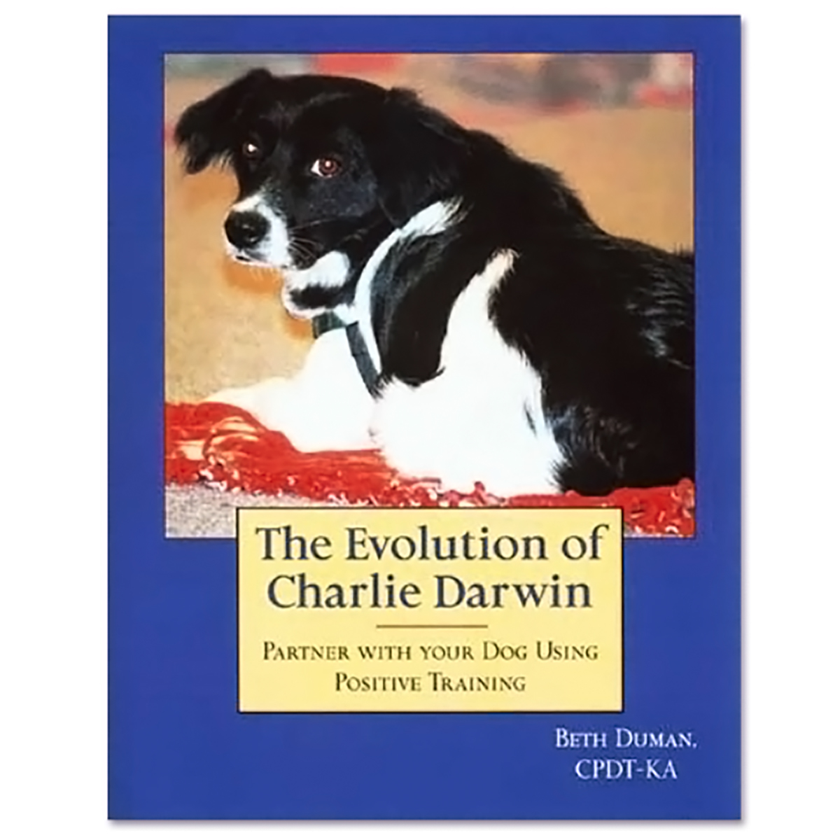 The Evolution of Charlie Darwin by Beth Duman