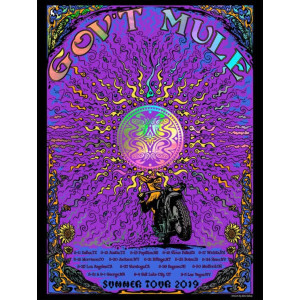 Gov't Mule Summer Tour 2019 Poster - 2nd Leg
