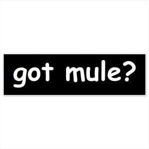 Got Mule? Sticker