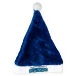 Warren Haynes Christmas Jam 25 Santa Hat