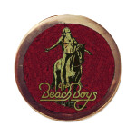 Beach Boys Mosaic Icon Pin