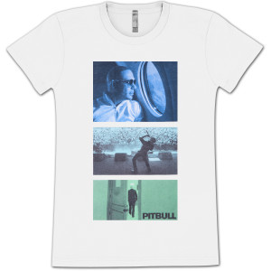 PITBULL Windows Ladies T-Shirt
