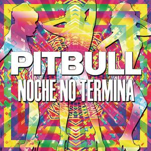 Pitbull Noche No Termina Digital Download