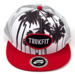 Trukfit Palms Mesh Hat