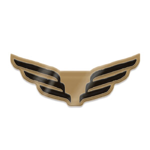 Wings Lapel Pin