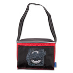Gavin DeGraw - Make A Move Cooler Bag