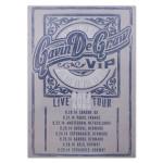 Gavin DeGraw - VIP Live 2014 Tour Poster