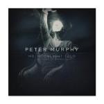 Peter Murphy - Mr. Moonlight Tour: 35 Years Of Bauhaus DVD
