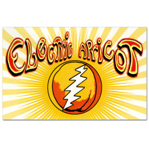 Electric Apricot Square Sticker