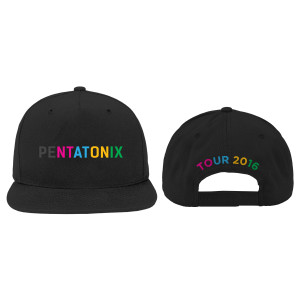 Color Logo Tour 2016 Hat