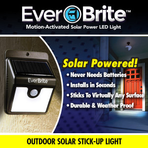 Ever Brite LED Light