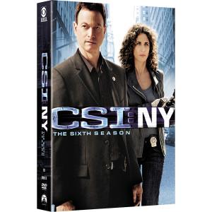 CSI: NY - Season 6 DVD