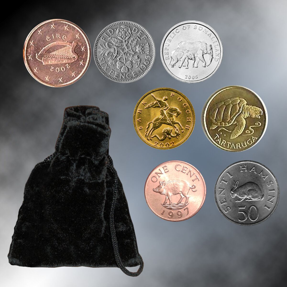 Lucky Coin Set