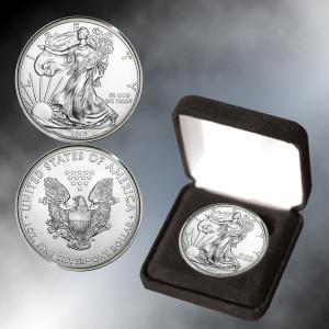 2019 Silver Eagle BU