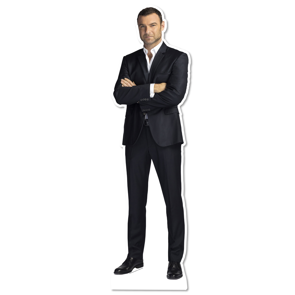 Ray Donovan Standee