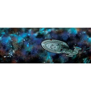 Star Trek Voyager Intrepid Class Poster [18x24]