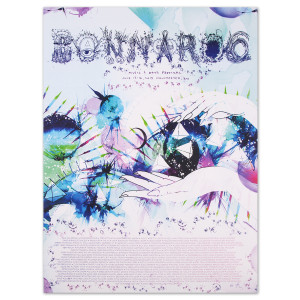 Hannah Stouffer Bonnaroo 2013 Poster