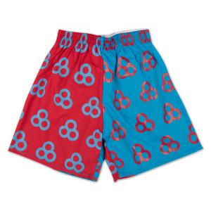 Bonnaroo Boxer Shorts
