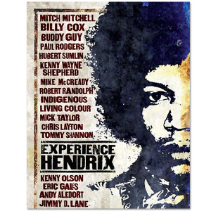 Experience Hendrix DVD