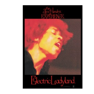 Electric Ladyland Glass Print