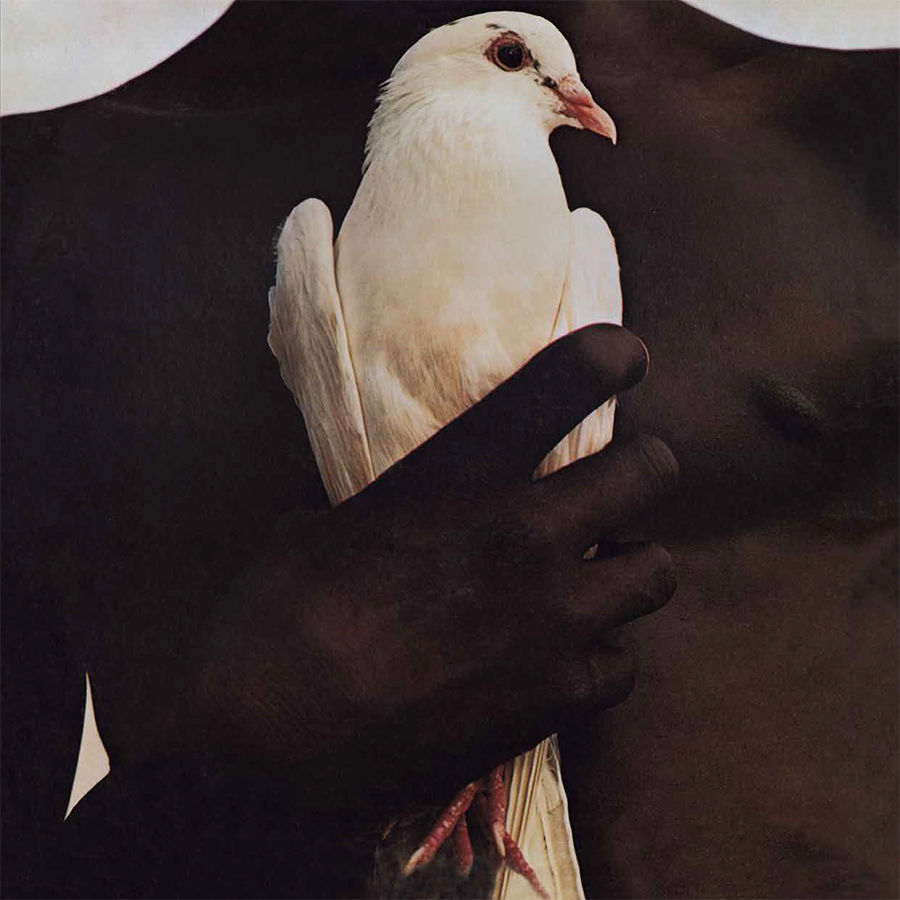 Santana - Greatest Hits (180 Gram Audiophile Vinyl Ltd. 40th Anniversary Edition/Gatefold Cover)